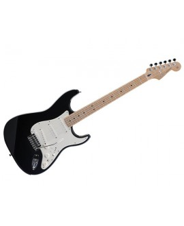 Guitarra Eléctrica Roland GC-1