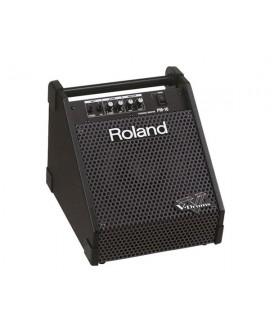 Monitor Activo Batería Electrónica Roland PM-10