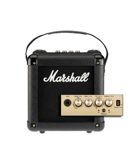 Combo Marshall MG2FX