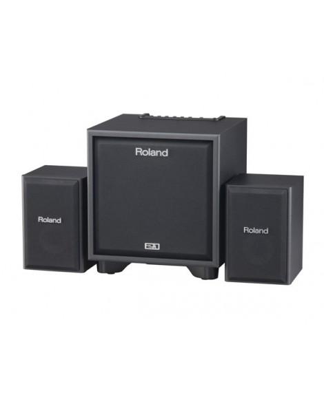 Amplificador Roland CM-110