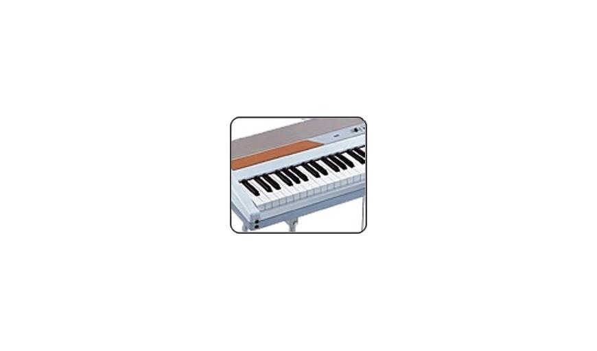 Teclados & Pianos
